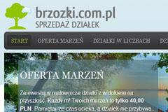 Paweł Wiśniewski Nieruchomości – sprzedaż działek